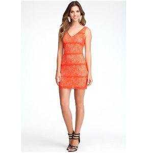 BeBe Betsy Border V-neck Lace Day dress /Fiery Red